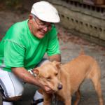 Best dog breeds for older people
