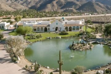 ViacomCBS Exec Tom Ryan Pays $8.4M for Palm Springs' Extravagant Pond Estate