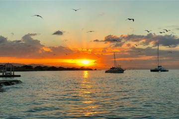 Caribbean Tourism Organization Expresses Optimism Regarding Travel This Summer and Beyond