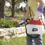 Weed Killers Tip: 5 Things to Know Before You Spray
