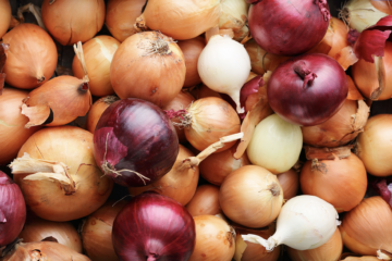 FDA & CDC Advise Throwing Out Unlabeled Onions Due to Salmonella Concerns